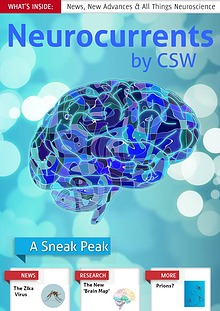 Neurocurrents by CSW