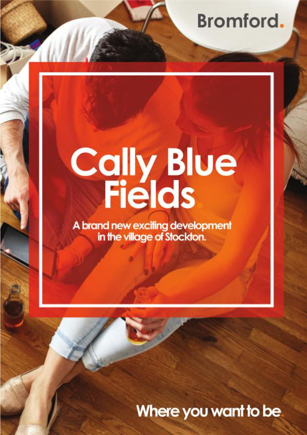 Where you want to be! Cally Blue Fields