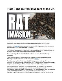 Rats - The Current Invaders of the UK