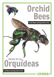 Crees Foundation - Orquid Bee Guide of Manu Learning Centre.