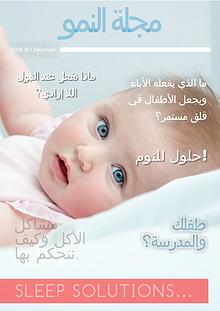 Developmental  Magazine