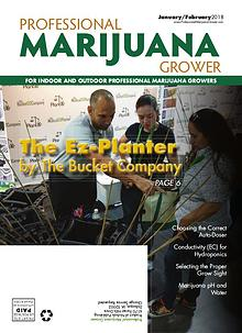 Professional Marijuana Grower