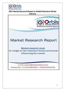 Global Potassium Citrate Industry Overview
