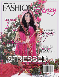 November 2011 Issue December 2011 Issue