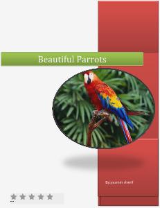 parrots june 2013