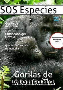 El gorila: una especie a punto de extinguirse