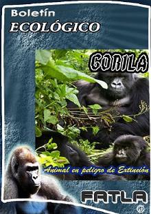 El Gorila - Especie en Extinción