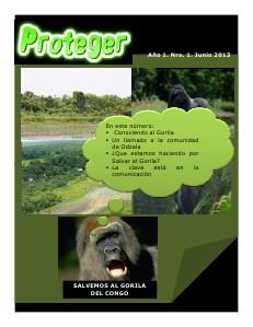 PROTEGER Año 1 Nro 1 junio 2013
