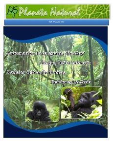 Salvando al Gorila en el Congo 1