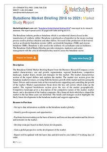 Butadiene Industry Key Companies Analysis 2016 To 2019