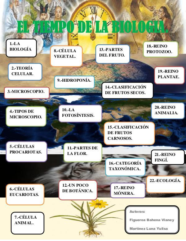 EL TIEMPO DE LA BIOLOGIA EL TIEMPO DE LA BIOLOGIA