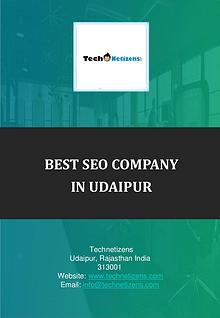 Best SEO company in Udaipur, SEO services Udaipur : Technetizens