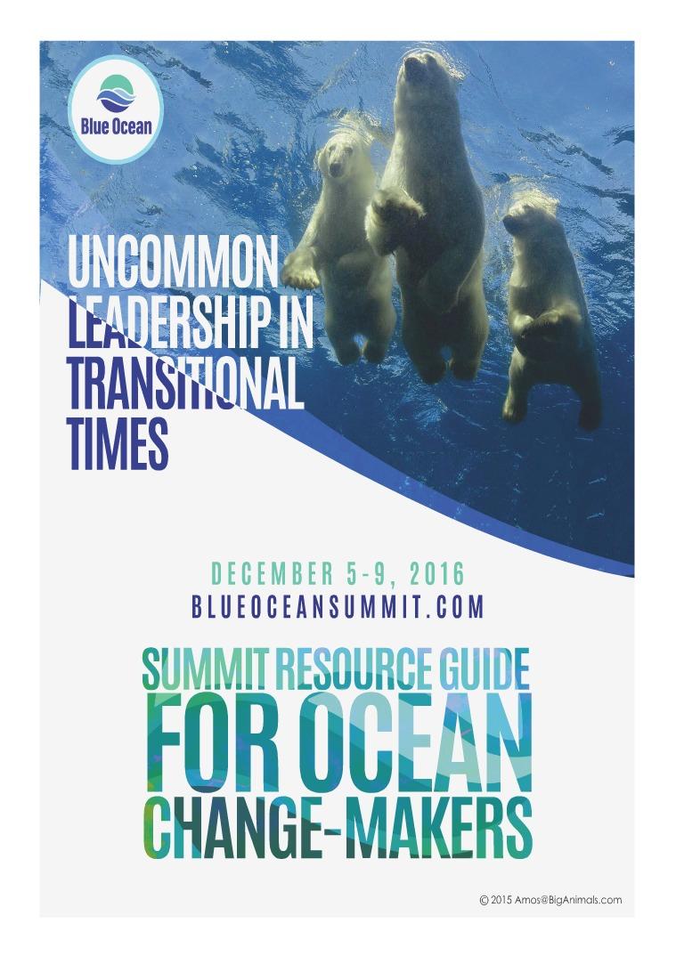 Blue Ocean Network Liz Cunningham