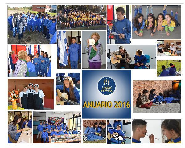 Liceo Espigas - Anuario 2016 1