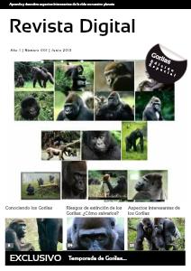 Revista Electrónica v1.jun.2013