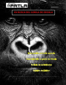 En busca del gorila de Odzala jun 2013