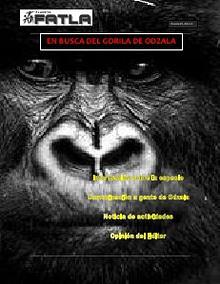 En busca del gorila de Odzala