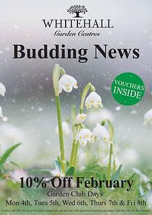 Budding News