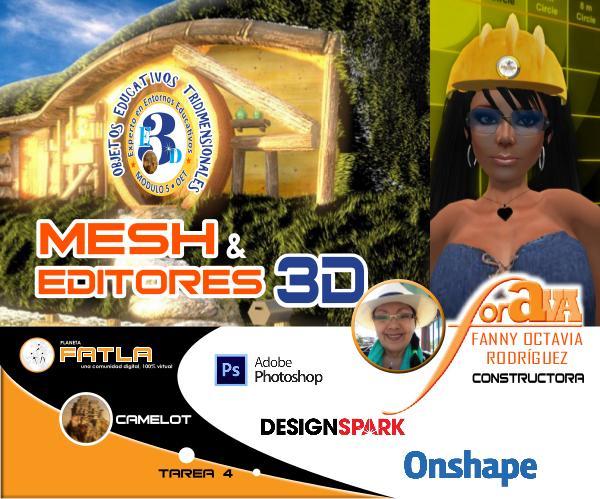 Mesh y Editores 3D - ForAva - 01/09/2019 ForAva-Ensayo-OET-Mesh-Editores3D