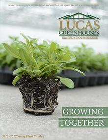 Lucas Greenhouses Young Plant Catalogs