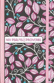 NIV Psalms and Proverbs