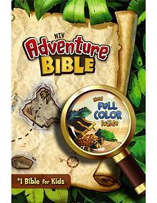NIV Adventure Bible - Activities