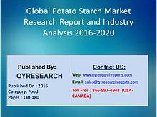 Potato Starch Market 2016 Awareness through Healthy Diet Stokes