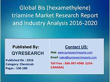 Global Bis (hexamethylene) triamine Market 2017 Profiles, financial