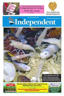 The Independent October 31 2017