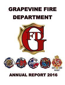 GFD Annual Report 2016