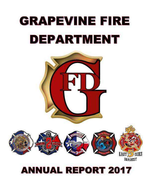 GFD Annual Report 2017 GFD Annual Report 2017