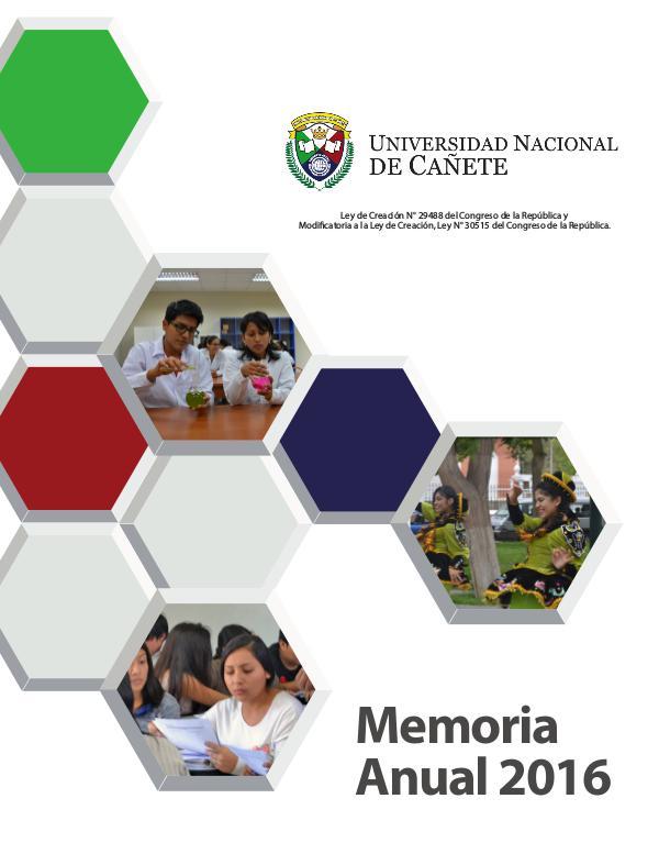 Universidad Nacional de Cañete - Memoria Anual 2016 1