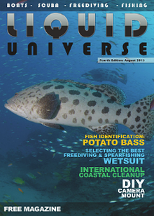 Liquid Universe  ::  Fourth Edition  ::  August 2013