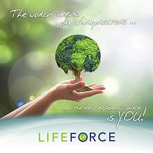 LIFEforce Brochure