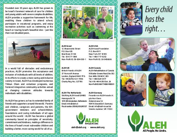 aleh 1 page brochure new march 2018 joomag newsstand
