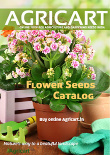 Agricart seed catalog