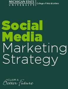 Social Media Marketing Strategy November 2013