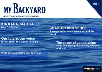 My Backyard Issue 1