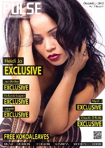 PULSE The Magazine Vol.1 Issue 4