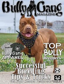 Bully Gang Magazine