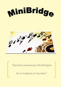 MiniBridge - 2013