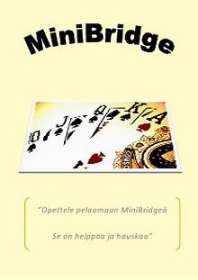 MiniBridge