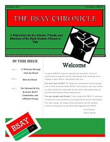 BSAY Chronicle