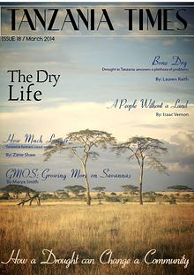 Tanzania Times