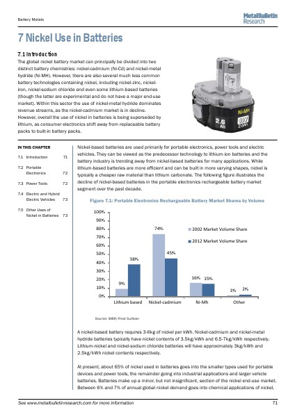 Ten Year Strategic Outlook for the Primary Battery