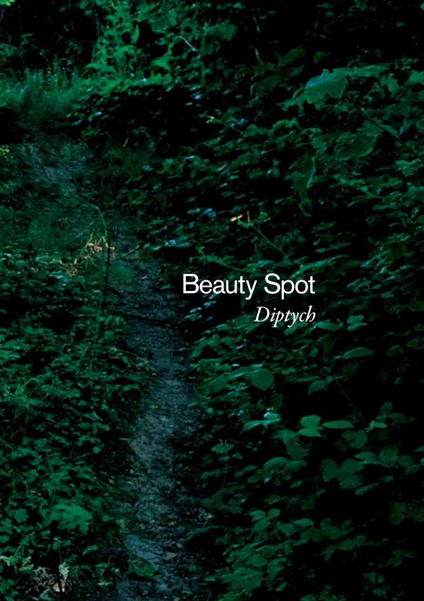 Beauty Spot beauty spot brochure final5 copy