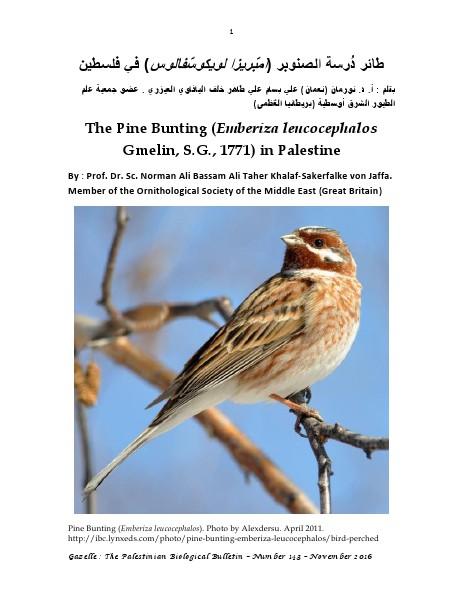 Gazelle : The Palestinian Biological Bulletin (ISSN 0178 – 6288) . Number 143, November 2016, pp. 1-6.