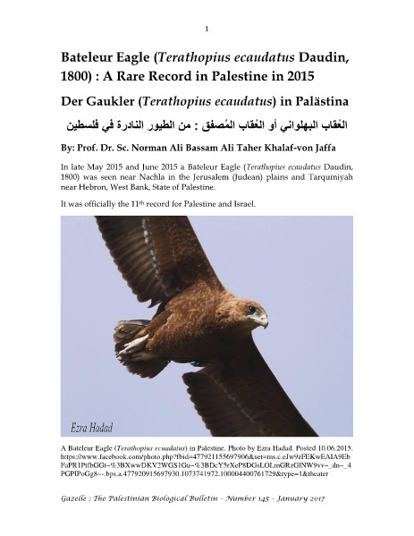Gazelle : The Palestinian Biological Bulletin (ISSN 0178 – 6288) . Number 145, January 2017, pp. 1-22.