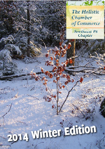 2014 - NEPA Holistic Chamber of Commerce Volume 2 issue 1