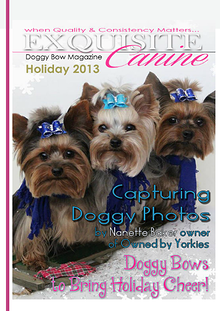 Exquisite Canine by Doggy Bow